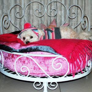 Princess dog bed