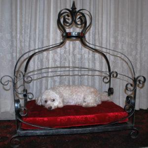 Queen dog bed